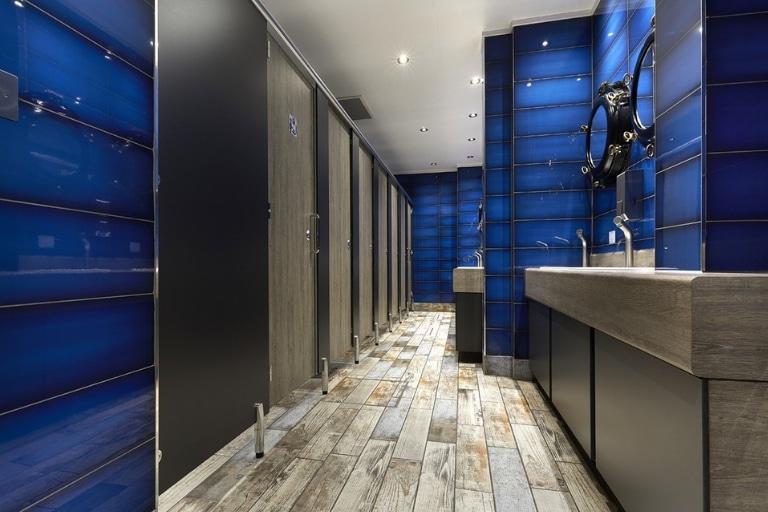 Blue Modern Style Washroom